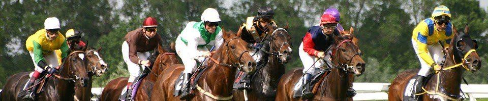 КСИОК — конный спорт во Франции